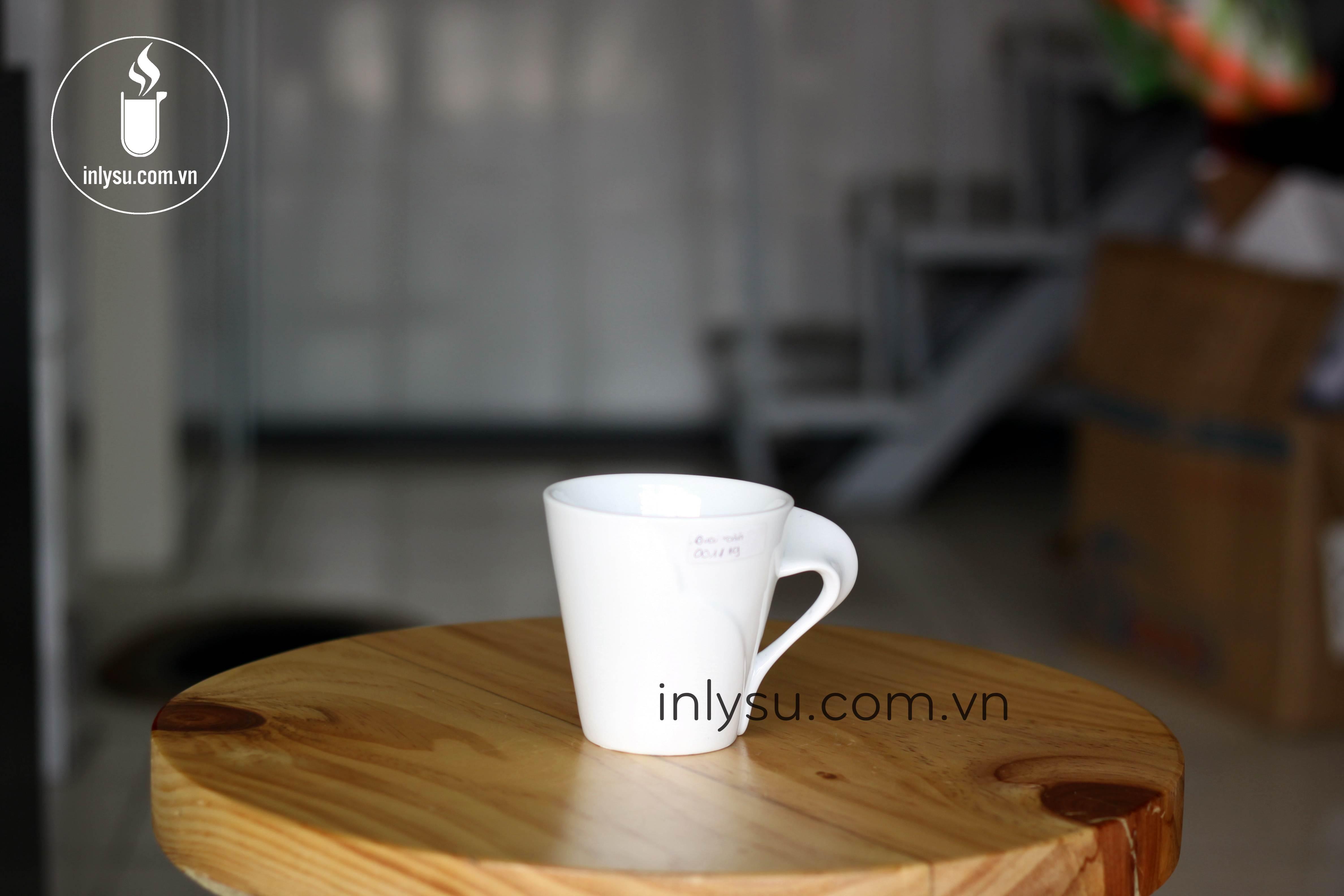 in ly sứ giá rẻ hcm inlysu.com.vn